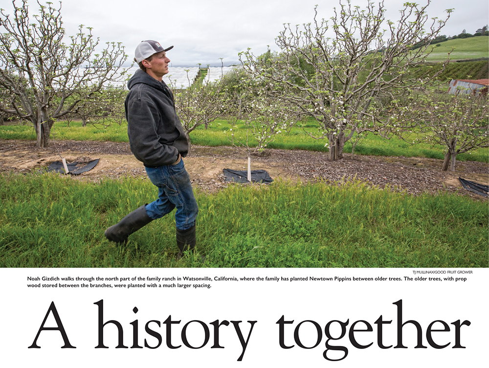 Pages: Watsonville Apple Farmers